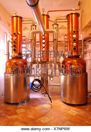 Modern distillation of whiskey - Stock Photo