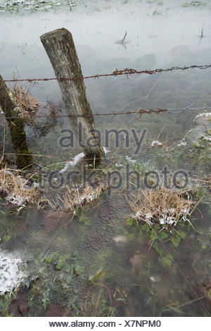 Ice on water in a meadow - Stock Photo