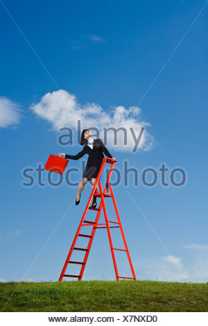 Businesswoman with red briefcase balancing on top of  red ladder in grass field - Stock Photo