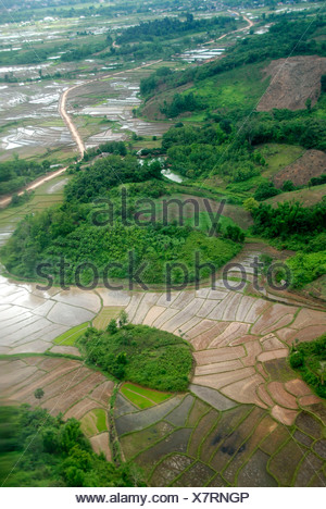 View from above on rice paddies, wet rice, Oudomxay Province, Laos, Southeast Asia, Asia - Stock Photo