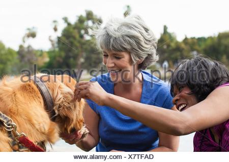 Two mature female friends, petting dog, outdoors - Stock Photo