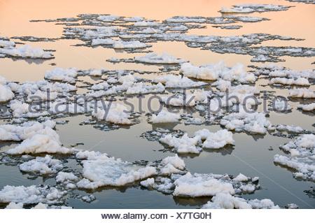 Ice adrift on the river Elbe near Hamburg, Germany, Europe - Stock Photo