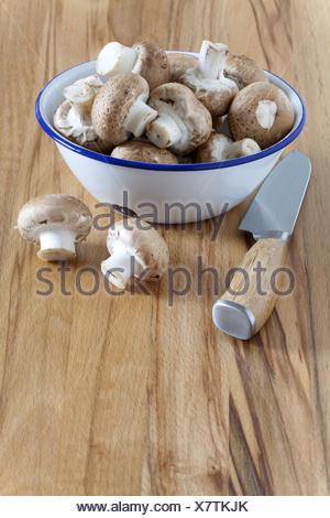 Emaille Schale mit frischen Champignons - Stock Photo