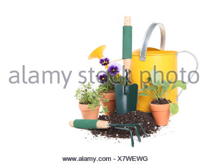 Planting New Flowers and Herbs in the Garden - Stock Photo