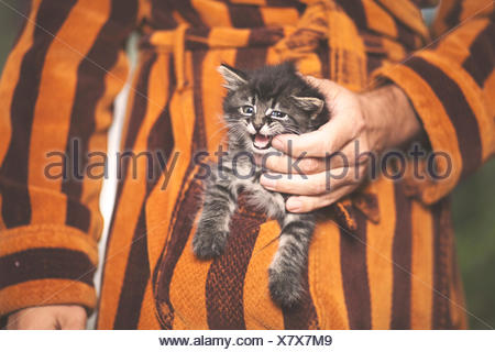 Man holding kitten in pocket of his bathrobe - Stock Photo