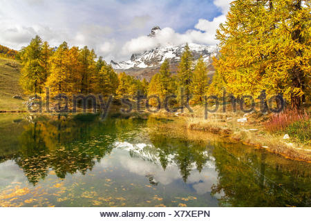 The Matterhorn stands out among the clouds and it is reflected in the small lake Blu surrounded by colorful trees in autumn (Cervinia, Valtournenche, Aosta province, Aosta Valley, Italy, Europe) - Stock Photo