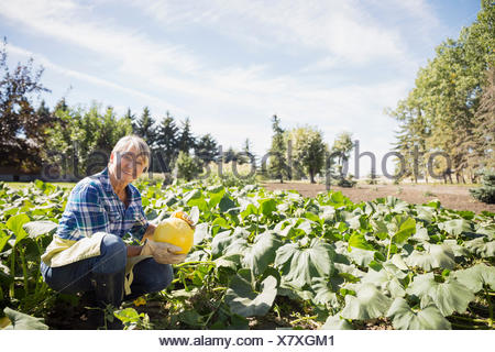 Portrait of woman harvesting squash in vegetable garden - Stock Photo