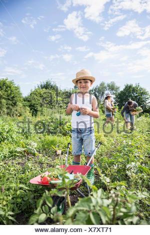 Small boy holding switchblade with wheelbarrow in community garden, Bavaria, Germany - Stock Photo