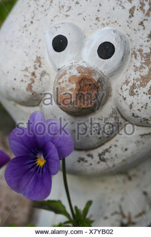 garden flower plant eyes clay figure funny gardens aborted pansy old laugh - Stock Photo