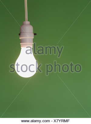 glass light bulb and switch white electric flex - Stock Photo