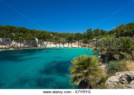 Majorca, Mallorca, Balearic Islands, island, isle, islands, isles, Spain, Europe, Spanish, Europe, European, outdoors, Outside, - Stock Photo