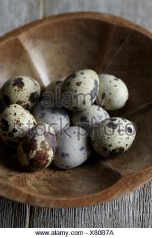 Quail eggs in wooden bowl - Stock Photo