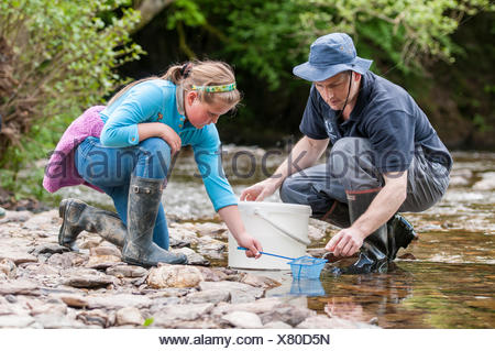 School child releases salmon fry in the River Haddeo, with Westcountry Rivers Trust (WRT) warden. Bury, Exmoor National Park, Somerset, UK. May 2012. Editorial use only - Stock Photo