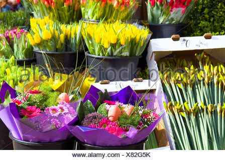 Flower Stand - Stock Photo