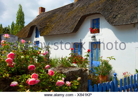 Saint Joachim, France, Europe, Brittany, department Loire-Atlantique, house, home, garden, roses, straw roof - Stock Photo