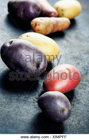 Mixed varieties of fresh potatoes - Stock Photo