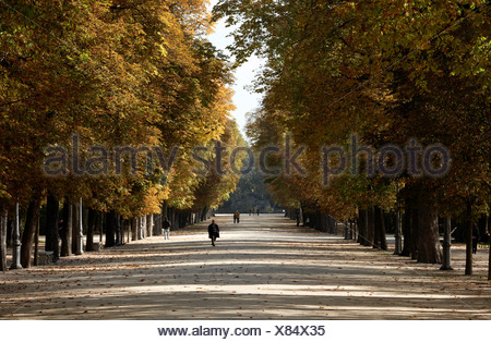 Parma residents stroll through tree-lined promenades in Parco Ducale. - Stock Photo