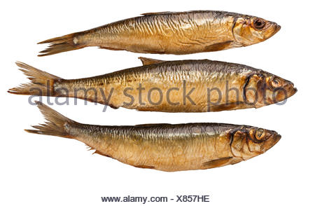 food aliment isolated colour brown brownish brunette blank european caucasian cold catarrh angle fish dish meal seafood grill - Stock Photo
