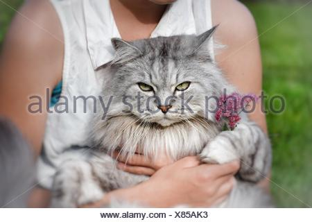 Teenage Girl sitting with a cat on her lap - Stock Photo