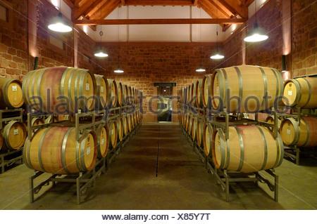 wine casks in a winery, Germany, Rhineland-Palatinate - Stock Photo