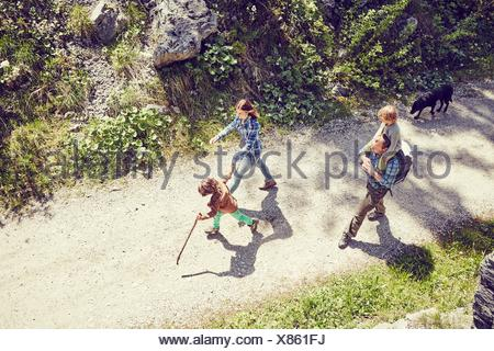 Family walking through forest, dog walking behind, elevated view - Stock Photo