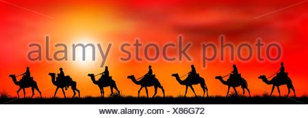 Caravan of camels at sunset 1 - Stock Photo