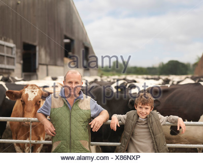 Farmer And Son With Cows - Stock Photo