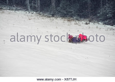 Girl on a sledge - Stock Photo
