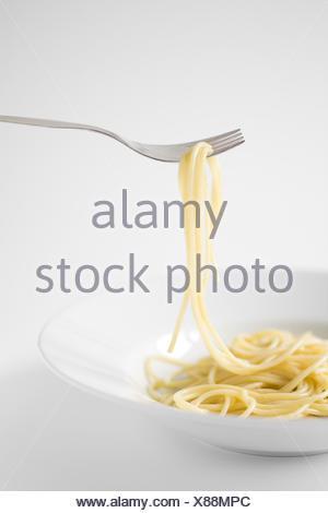 Plate spaghetti, twig, - Stock Photo