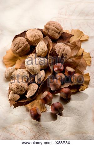 Walnuts,hazelnuts and almonds - Stock Photo