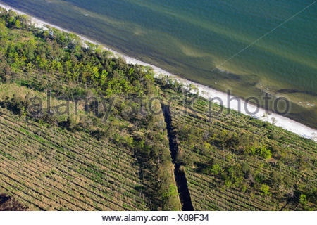 Coast of Baltic Sea, Zingst, Mecklenburg-Western Pommerania, Germany - Stock Photo
