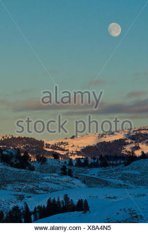 A full moon hangs over a winter landscape at sunrise. - Stock Photo