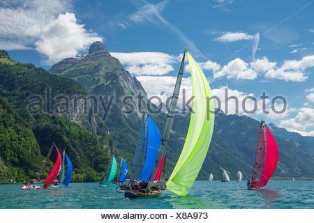 Lake Uri, yachting, regatta, Vierwaldstättersee, Lake Lucerne, sailing, sailboat, Water sport, Switzerland, Europe, - Stock Photo