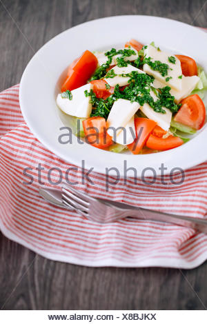 High angle view of a fresh salad with tomato, cheese, basil, parsley and olive oil - Stock Photo
