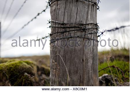 Wooden post and barbed wire, fence near Kirkjubæjarklaustur, Kirkjubaejarklaustur, Skaftárhreppur, Suðurland, Sudurland, Iceland - Stock Photo