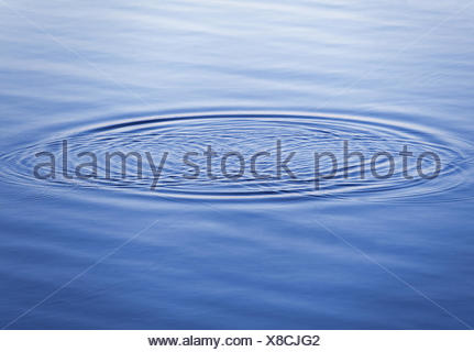 Circle on calm water in the evening - Stock Photo