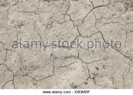 Water shortage - Stock Photo
