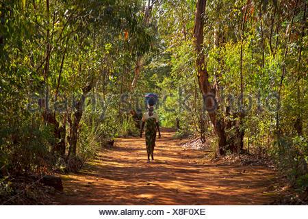 woman with basket on her head walking on path to local market, Burundi, Cankuzo, Cankuzo - Stock Photo