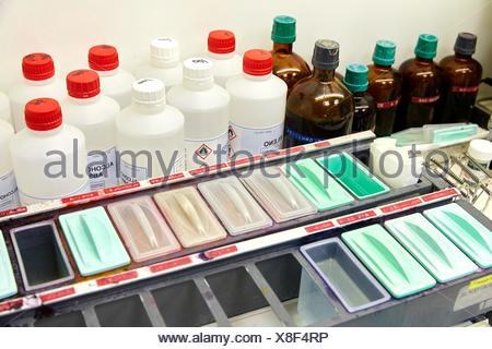 Cytology, Anatomic Pathology, Hospital Donostia, San Sebastian, Gipuzkoa, Basque Country, Spain - Stock Photo