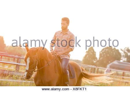 Man horseback riding in sunny rural pasture - Stock Photo