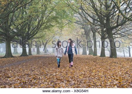 Two young girls walking hand in hand through forest in autumn - Stock Photo