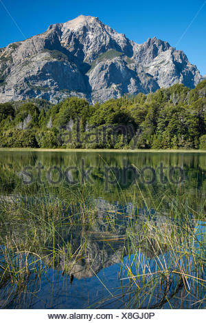 South America,Argentina,Patagonia,Rio Negro,Bariloche,Nahuel Huapi,National Park - Stock Photo