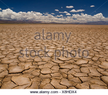 Large field of baked earth after a long drought. - Stock Photo