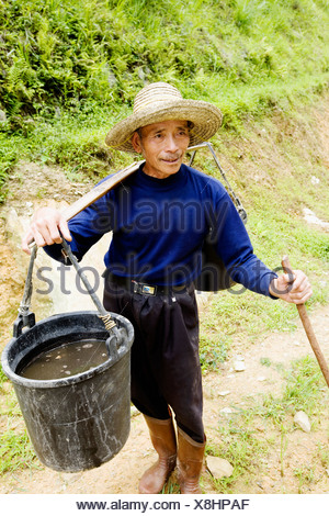 Senior man carrying a bucket full of water on his shoulder, Jinkeng Terraced Field, Guangxi Province, China - Stock Photo