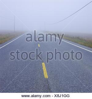 Strasse im Nebel - Stock Photo
