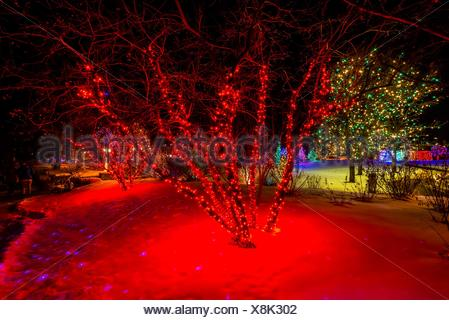 A Hudson Christmas Holiday Light Show At Hudson Gardens Littleton Stock Photo 94859746 Alamy