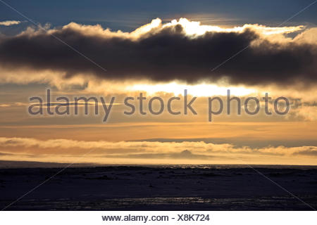 Iceland, Iceland, north-east, winter scenery in the ring road 1, Myvatnsöräfi, Veggir - Stock Photo