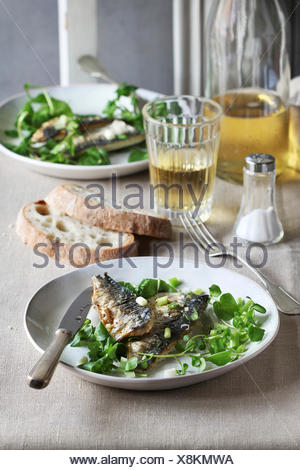 Two fillets of grilled mackerel fish on a plate with watercress salad and a glass of wine - Stock Photo