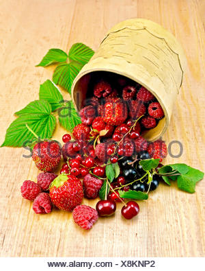 Red and black currants, raspberries, strawberries, cherries with green leaves in a bowl  from birch bark on a wooden board - Stock Photo