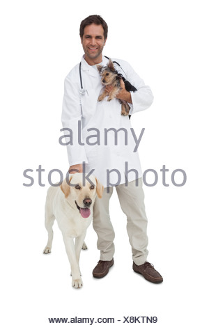 Happy vet smiling at camera with yorkshire terrier and yellow labrador - Stock Photo